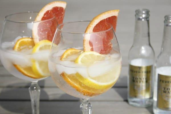 Gin Tonic citrus varen boottocht Amsterdam
